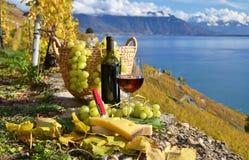 Vinho e queijo foto de stock