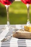Vinho e queijo Imagem de Stock Royalty Free