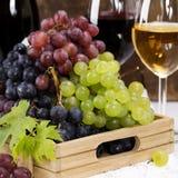 Vinho e uva Imagem de Stock