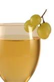 Vinho e uvas Imagem de Stock Royalty Free