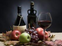 Vinho e uvas Fotografia de Stock Royalty Free