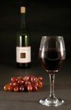 Vinho e uvas Foto de Stock Royalty Free