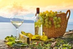 Vinho e uvas fotos de stock