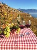 Vinho e uvas Fotos de Stock Royalty Free