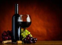 Vinho e uvas com espaço da cópia Fotografia de Stock Royalty Free