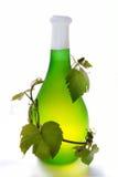 Vinho e vinha Imagens de Stock