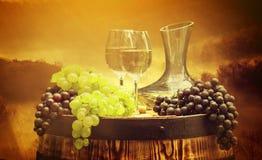Vinho e vinhedo no por do sol Fotos de Stock Royalty Free