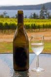 Vinho em um vinhedo da costa oeste Foto de Stock