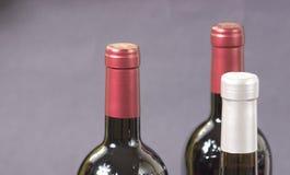 Vinho italiano Fotografia de Stock Royalty Free