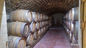Vinho italiano tradicional imagem de stock