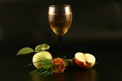 Vinho, maçã e grama Imagens de Stock Royalty Free