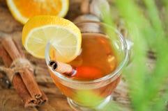 Vinho quente para o inverno e o Natal com laranja e as especiarias deliciosas Fotos de Stock