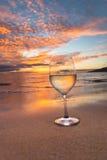 Vinho sorvendo no por do sol Foto de Stock