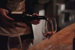 Vinho tinto de derramamento do sommelier masculino em copos de vinho longo-provindos Fotografia de Stock Royalty Free