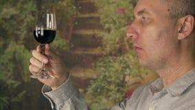 Vinho tinto do gosto do sommelier do homem do fim do vidro acima Homem que bebe o vinho vermelho vídeos de arquivo