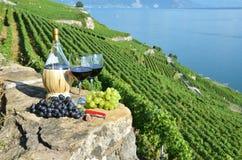 Vinho tinto e uvas Fotografia de Stock Royalty Free