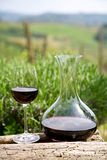 Vinho tinto em uma garrafa do vinho e em um vidro de vinho Fotografia de Stock Royalty Free