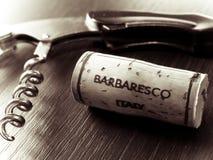 Vinho tinto italiano fotografia de stock