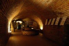 Vinho-vault Imagens de Stock Royalty Free