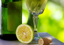 Vinho verde från Portugal Arkivbilder