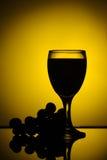 Vinho vermelho com silhueta das uvas Fotos de Stock