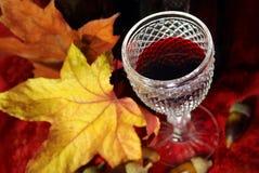 Vinho vermelho da queda Fotografia de Stock Royalty Free