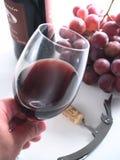 Vinho vermelho da reserva de Chianti, vidro, uvas Foto de Stock Royalty Free