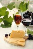 Vinho vermelho e cor-de-rosa Foto de Stock