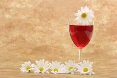 Vinho vermelho e margaridas brancas Imagem de Stock