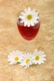 Vinho vermelho e margaridas brancas Foto de Stock