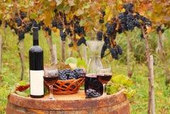 Vinho vermelho e uva Foto de Stock Royalty Free