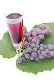 Vinho vermelho e uvas Fotografia de Stock Royalty Free
