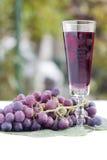 Vinho vermelho e uvas Foto de Stock