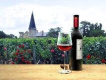 Vinho vermelho em Médoc francês ilustração royalty free