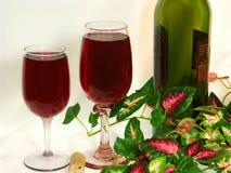 Vinho vermelho para dois Imagens de Stock