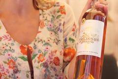 Vinhos do gosto Imagem de Stock Royalty Free
