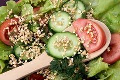 Vinhos do trigo mourisco Alimento do vegetariano Produto-vegetais frescos de vegetables Fundo de Brown Foto de Stock