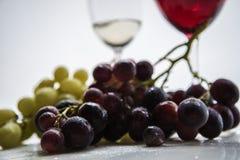 Vinhos e uvas Imagem de Stock