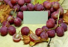 Vini rossi bottiglia ed uva di vimini casalinghe Fotografie Stock Libere da Diritti