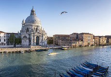 Vinice Canal Grande royalty free stock photos