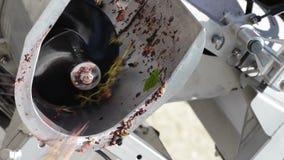 Vinificazione che ordina le vino-uve sull'arrivo alla cantina su una cinghia di vibrazione video d archivio