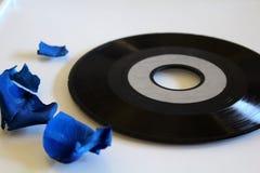 Vinilo de los sonidos Fotografía de archivo libre de regalías