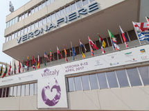 Vinitaly - internationale Weinausstellung 9.-12. April 2017 Verona, Italien stockbilder