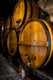 Vinkällare, Tuscany royaltyfri foto