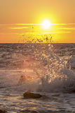 Vinka färgstänk på solnedgången Royaltyfria Foton