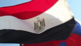 Vinka för flera nationsflaggor stock video