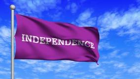 Vinka för självständighetflaggaögla stock video