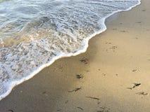Vinka på stranden Arkivfoton