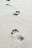 Vinka på stranden Royaltyfria Bilder