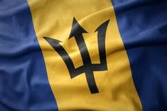 Vinkande färgrik flagga av Barbados Arkivbilder